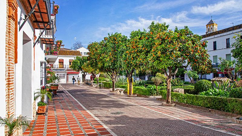 En gate med appelsintrær og hvite bygninger av kalkstein. En grønn og frodig park.